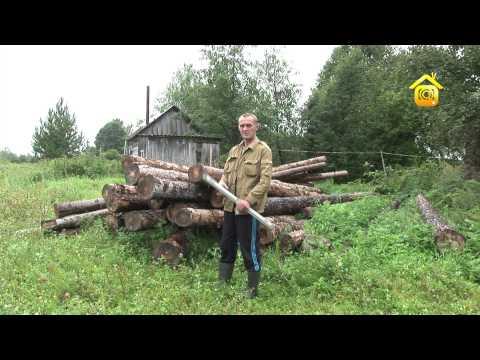 Подготовка брёвен к рубке сруба (ForumHouseTV)