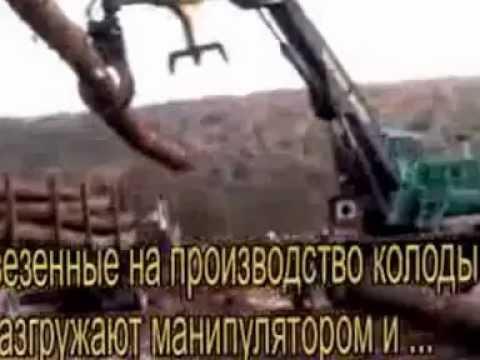 Производство и продажа пиломатериалов в Киеве