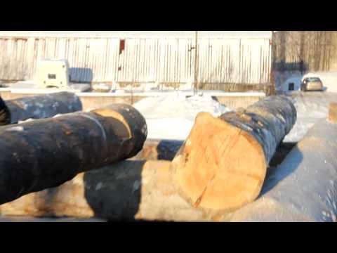 Профессионалы рубят сруб из сухарника! (видео 1)